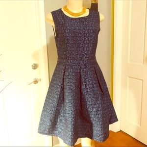 Structured Fit and Flared Dress